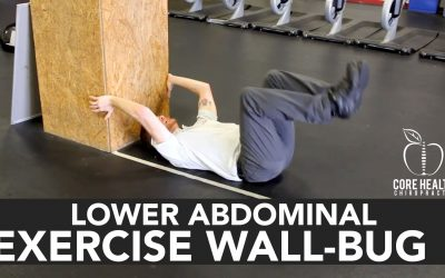 Lower Abdominal Exercise Wall-Bug